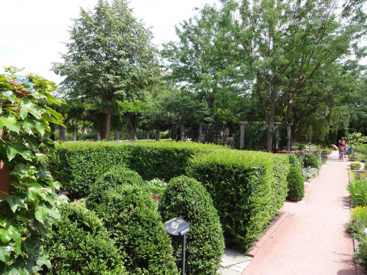 Well manage shrubs at the White River gardens.