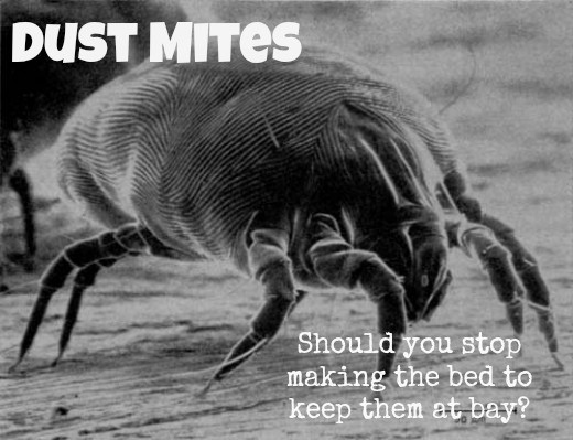 Does making your bed encourage dust mites to settle in?