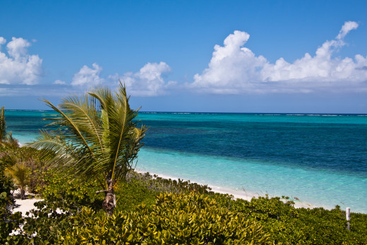 Turtle Cove, Providenciales, Turks and Caicos Islands