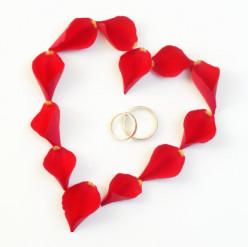 Divorces Ending Marriages