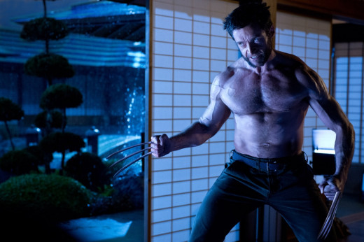 The core strength of this movie is its story. Wolverine's journey to rid himself of his demons is what makes this movie as good as it is.