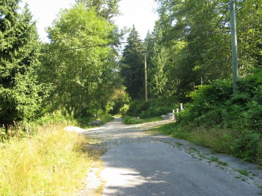 A connecting route to the Trans Canada Trail, which travels up Burnaby Mountain. The poles on the right indicate the direction of the Trans Canada Trail