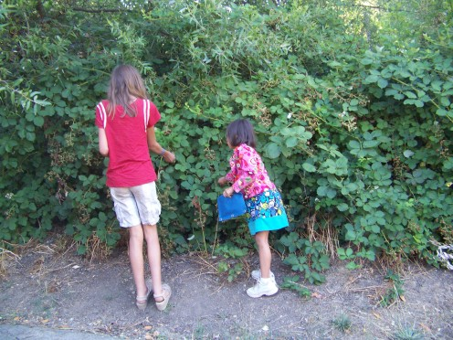 It's the small things that make memories... like picking fresh berries off the vine for breakfast.