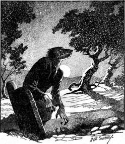 Real Werewolf Sightings