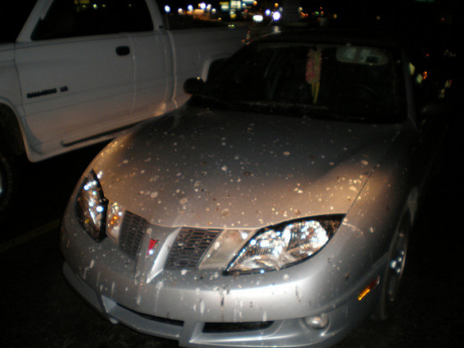 car covered in bird poop; should this rejuvenate the car?