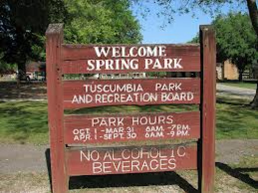 Spring Park is a family park and does not allow alcoholic beverages. Thousands of visitors travel to the massive park each and every year.