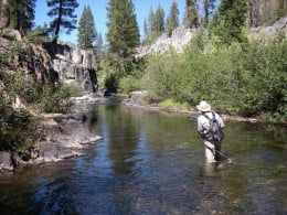 flyfishing upstream