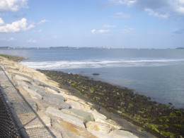 The causeway in South Boston