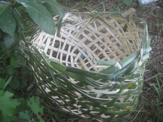 I made a bamboo basket! (Photo Source: Ireno Alcala aka travel_man1971)