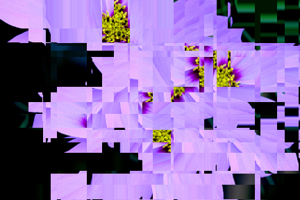 mosaic in purple, after using distort wave square