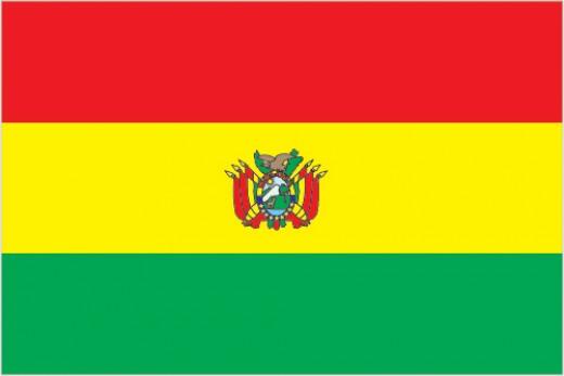 The flag of Bolivia