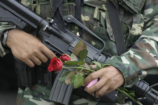 Roses and gun