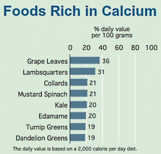 Foods that are Rich in Calcium