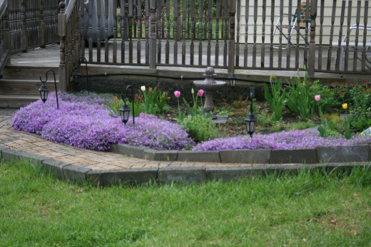 The dominant color palette in this spring garden is pink and purple, with phlox pulling the border together.