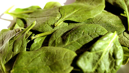 Green leafy vegetables such as spinach are high in folic acid