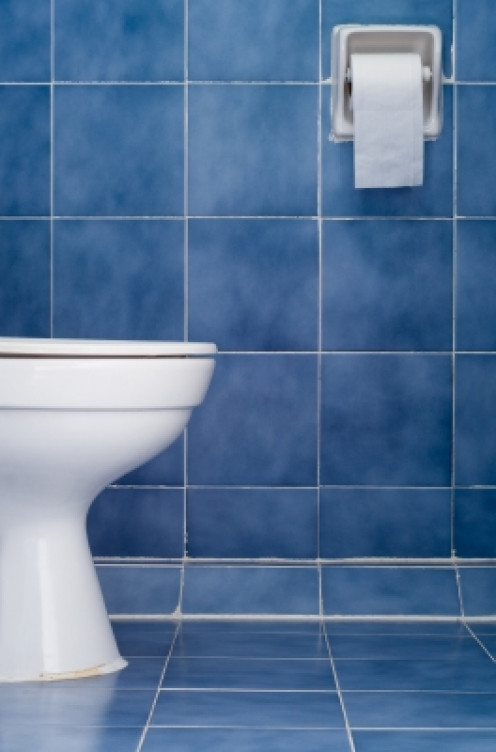 Close the lid for a healthier bathroom.