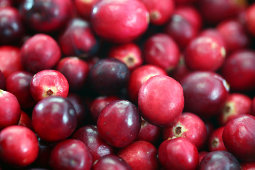 A few cranberries can add a bit of zest to the recipe, but be careful. Add only a few as cranberries have a strong flavor and can overpower the rest of the dish.