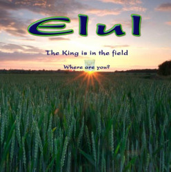 I Love You - A Song for ELUL