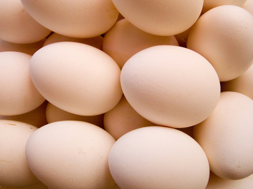 eggs are a possible protein source for some