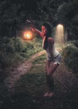 Light The Way from Robert Stebler flickr.com