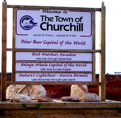 Some Of The Best Ways To Explore Churchill - Manitoba, Canada