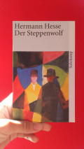 "Hermann Hesse ""the Steppenwolf"" summary - Summary of ""the Steppenwolf"" by Hermann Hesse"