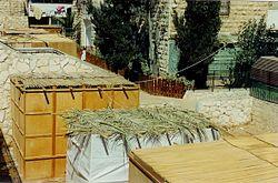 250px-Sukkah_Roofs.jpg