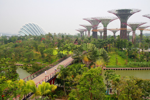 Panoramic view of Gardens by the Bay