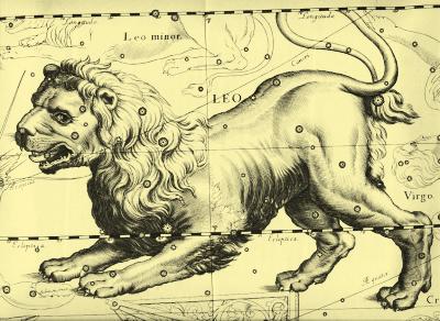 Dibuix de Leo, Leo by John Hevelius, 1690