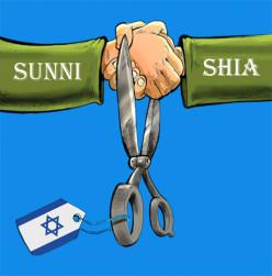 Sunni-Shia divide