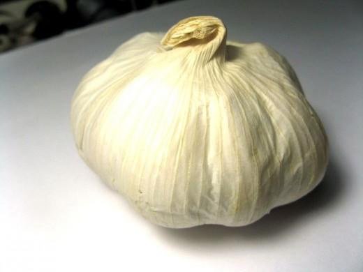 Garlic_bulb_allium_sativum