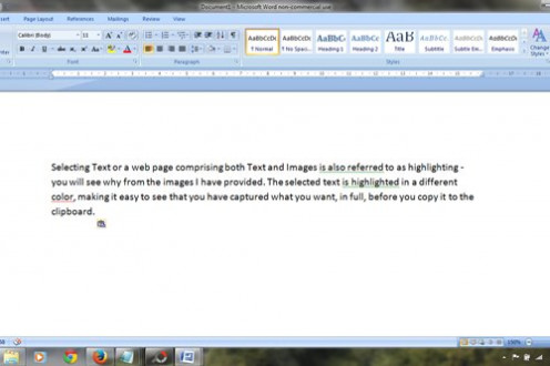 This is how the text I highlighted and copied looks after pasting it into my Microsoft Word processing program