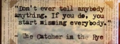 The Catcher In The Rye by J.D Salinger