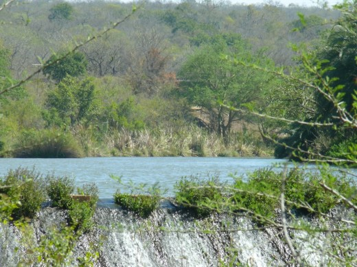 Dam on Mbuluzi River-Mlawula Nature Reserve