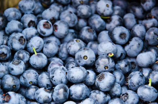 BLUEBERRIES ARE A SUPER FOOD WITH GREAT HEALTH PROPERTIES