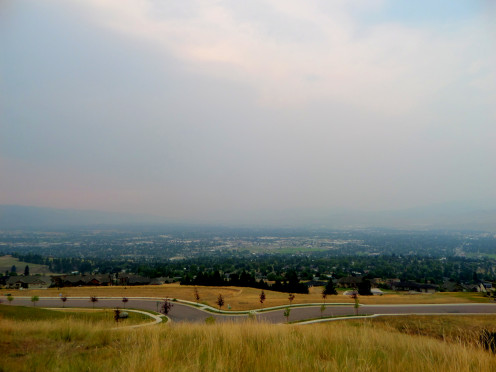 The city of Missoula, Montana spends much of the summer beneath a canopy of smoke from nearby wildfires.  Is this one of the reasons deer descend into the city in such numbers?  Are they simply trying to escape the choking smoke?