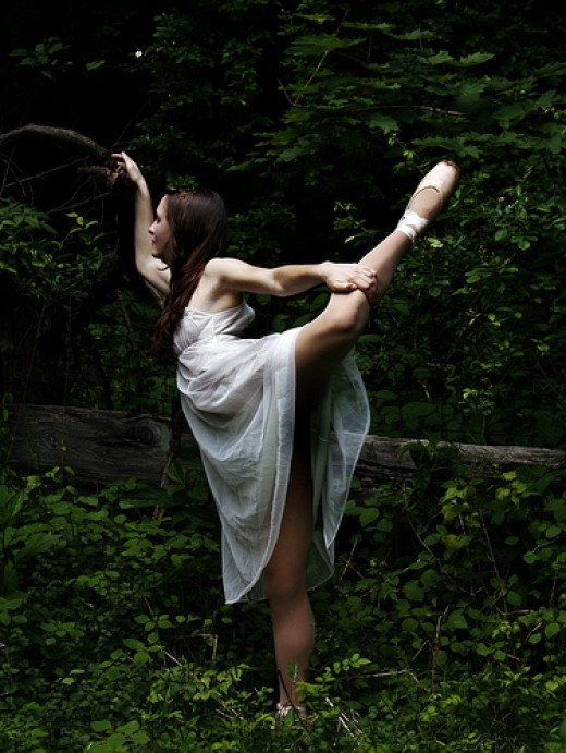 Dancer in the Woods from Tracey Harrison flickr.com