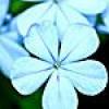 Markie W profile image