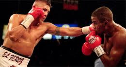 Felix Trinidad, who was a true knockout artist, knocked out Fernando Vargas in the 12th round and handed him his first career defeat.