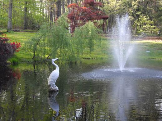 Fountain at the park's Lotus Garden