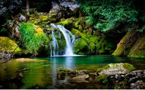 A lovely waterfall