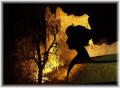 Scottish Hauntings - Ghostly Women