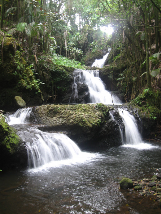 Onomea River waterfalls in Hawaii Tropical Botanical Garden Nature Preserve.