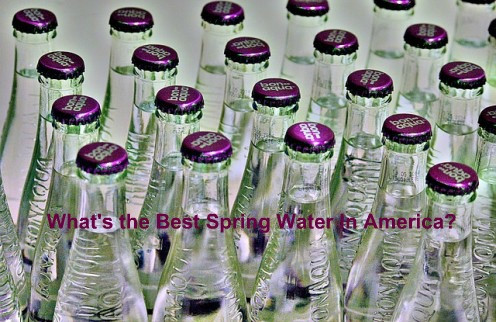 Best Spring Water Companies in America