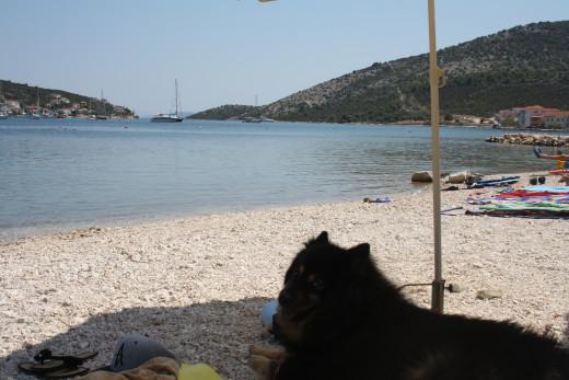 peeble, sandy beach, Benda enjoying & relaxing under the shade in Vinisce, Croatia