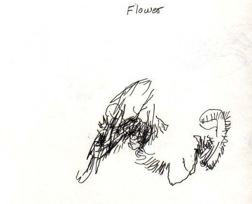 Even though I wrote flower at the top, it really was a potted plant that I was trying to draw.