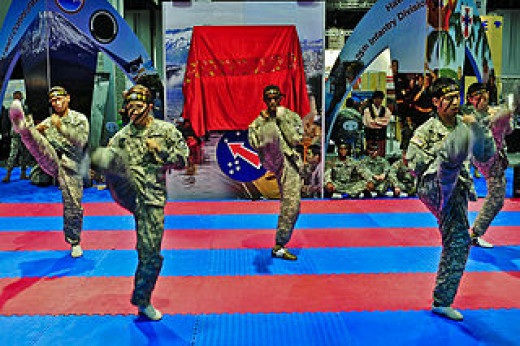 Twelve Soldiers perform Tae Kwon Do demonstrations at the Walter E. Washington Convention Center in Washington, DC., Oct. 12, 2011.
