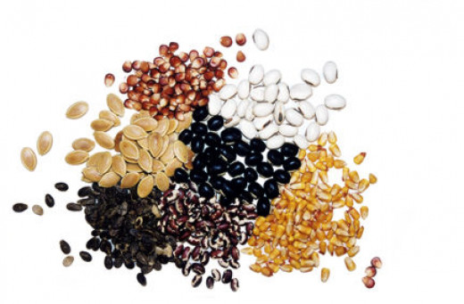 Different seeds that can used in class.