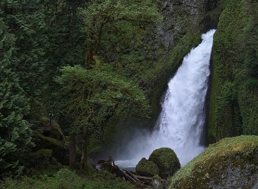 Observer from Oregon Hiker flickr.com
