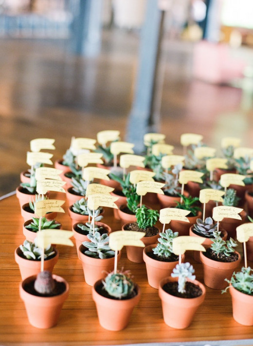 Mini-pots of succulents for guests to take symbolizing the growth of the couple's new life together.